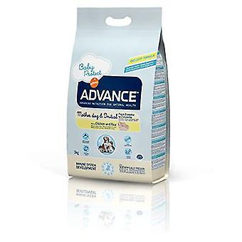 Advance Mother Dog & Initial (Dogs , Dog Food , Dry Food)