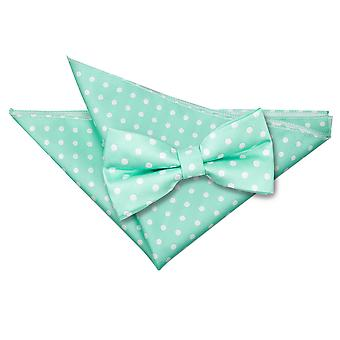 Mint grön prickiga fluga & Pocket Square Set