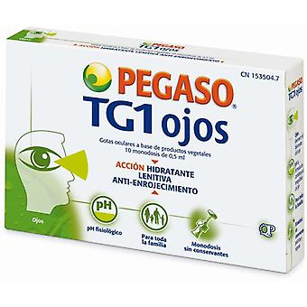 Pegaso Tg1 10 Eye Drops 0.5 Ml Monodose (Hygiene and health , First Aid Kit , Eyes)