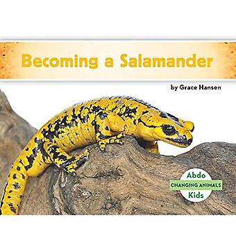 Becoming a Salamander (Changing Animals)