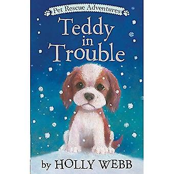 Teddy in Trouble (Pet Rescue Adventures)
