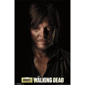 Walking Dead - Daryl Shadow Poster Poster Print
