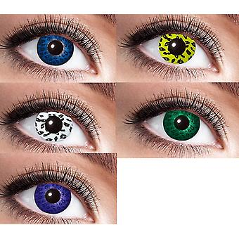 Contact lenses Leopard