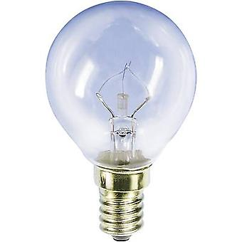 Bicycle light bulb 235 V 15 W Clear 00781510