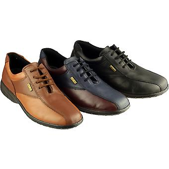 Cotswold Ladies Salford Lace Up Leather Waterproof Casual Shoe Brown
