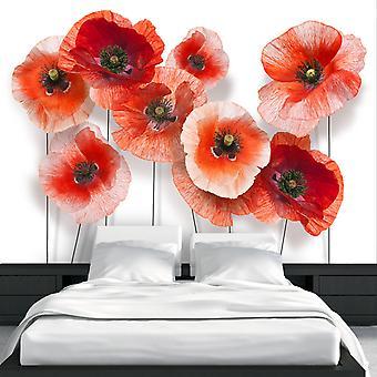 Wallpaper - Nine poppies