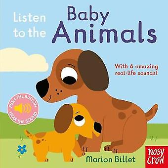 Listen to the Baby Animals by Marion Billet - 9780857638663 Book