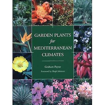 Plantas de jardim para climas mediterrânicas