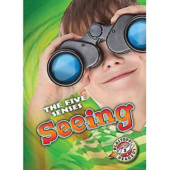 Seeing (Five Senses)