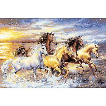 In The Sunset Counted Cross Stitch Kit 23.625
