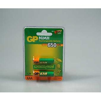 GP Huistel-Batterie 2 X Aaa Nimh Dect 650ma