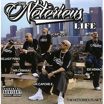Hi Power Entertainment Presents - Notorious Life [CD] USA import