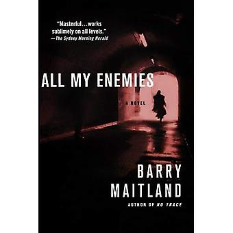 All My Enemies (Brock and Kolla Mysteries)