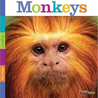 Seedlings: Monkeys