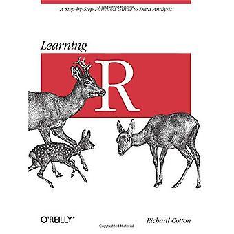 Lärande R