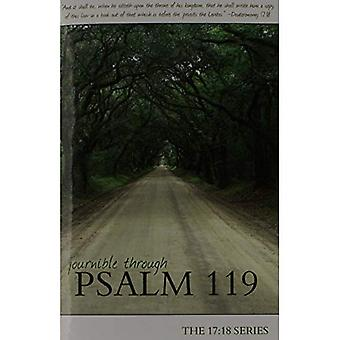 Psalm 119 (The 17:18 Series - Journible)