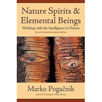 Nature Spirits and Elemental Beings: Working with the Intelligence in Nature: Revised, Updated and Expanded Edition