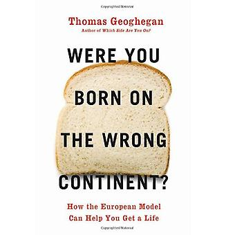 Were You Born on the Wrong Continent? - How the European Model Can Hel