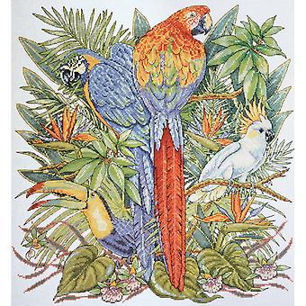 Birds Of Paradise Counted Cross Stitch Kit 16