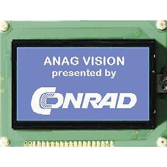 Graphics display White Blue (W x H x D) 144 x 104 x 14.3 mm Anag Vision AV241282BNBW-WTV