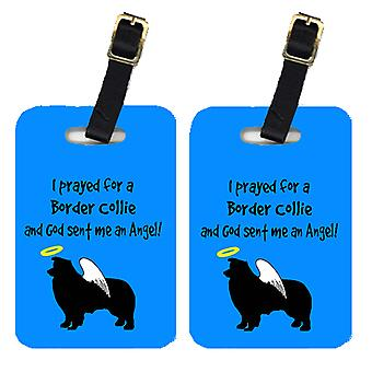 Carolines Treasures  AN1119BT Pair of 2 Border Collie Luggage Tags