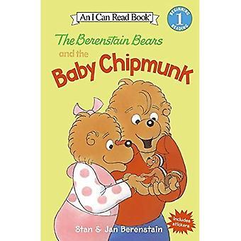 Ursos de Berenstain e o bebê esquilo (pode ler a série de livros)