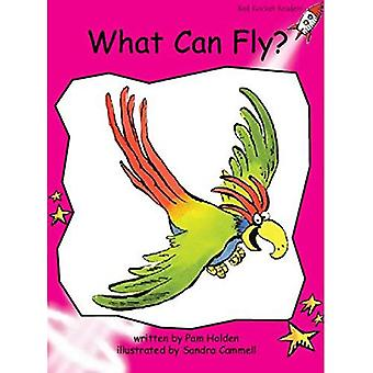 What Can Fly: Emergent (Red Rocket Readers: Fiction Set A)