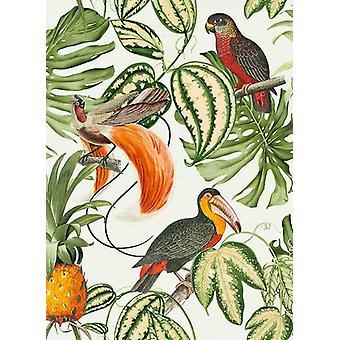 Paradisio Wallpaper Parrot Toucan Tropical Exotic Trees Flower Vinyl Erismann