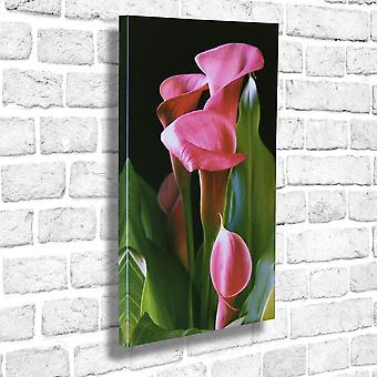 Photo Canvas Calla Lily, Wall Art 90 x 60 cm Attached to Real Wooden Framework