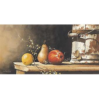 Fruit Trio Poster Print by John Rossini (24 x 12)