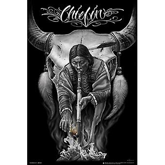 DGA Chiefin Indian Poster Poster Print