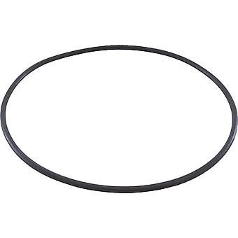 Jandy R0446300 Backplate O-Ring for Jandy SHPF SHPM JEP1.5 Series Pump