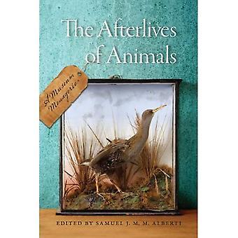 Die Kurzgeschichtensammlung von Tieren: ein Museum Menagerie