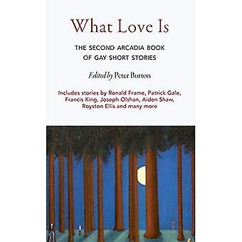 What Love Is: The Second Arcadia Book of Gay Short Stories