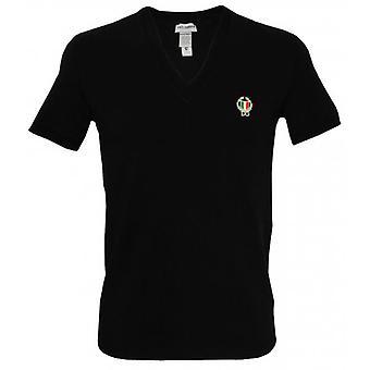 Dolce & Gabbana Sport Crest diepe V-hals T-shirt, Black