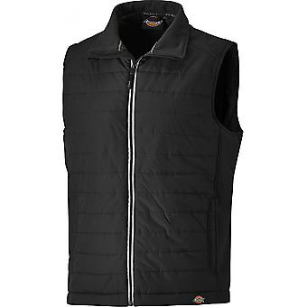 Dickies Mens Loudon Lightly Padded Polyester Workwear Gilet Waistcoat