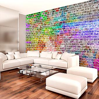 Tapet - Rainbow væg