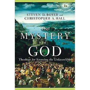 Mysteriet om Gud af Steven D Boyer - Amtoft Hall - 9780801027734