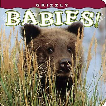 Grizzly bebisar