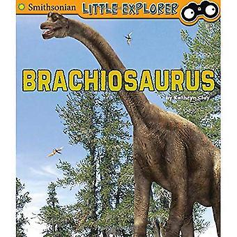Brachiosaurus (pequeno paleontólogo)