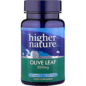 Higher Nature Olive Leaf Extract, 90 veg caps