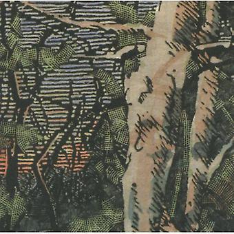 Anomoanon - dormido muchos años en la importacion de USA de madera [CD]