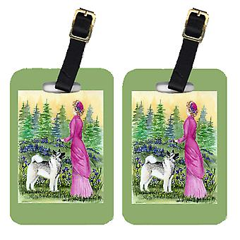 Carolines Treasures  SS8154BT Lady with her Norwegian Elkhound Luggage Tags Pair