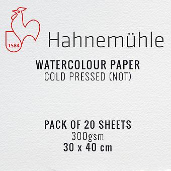 Hahnemuhle Watercolour Paper 300gsm 30 x 40cm Pack of 20 Sheets