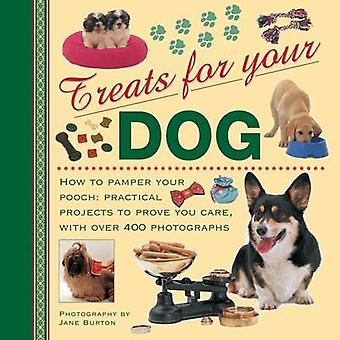 Treats for Your Dog - How to Pamper Your Pooch - Practical Projects to