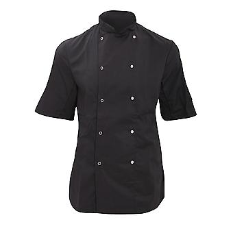 Dennys Womens/Ladies Economy Short Sleeve Chefs Jacket / Chefswear (Pack of 2)