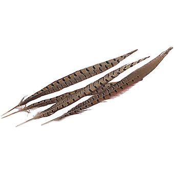 Ringneck Pheasant Feathers 4 Pkg Natural Md38132
