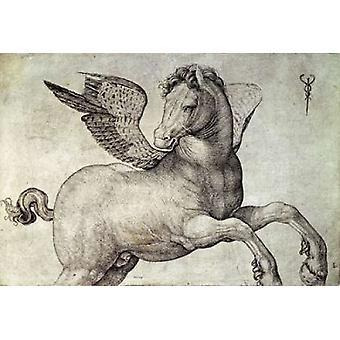 Stampa del manifesto di Pegasus di Jacopo De Barbari