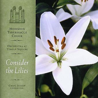 Mormon Tabernakel kor - overveje liljer [CD] USA importen