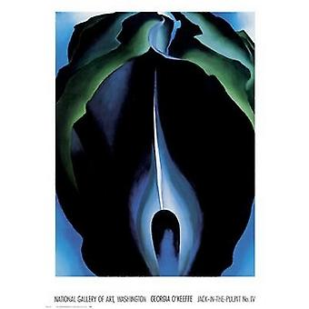 Jack-In-The-Pulpit geen IV Poster afdrukken door Georgia OKeeffe (36 x 49)